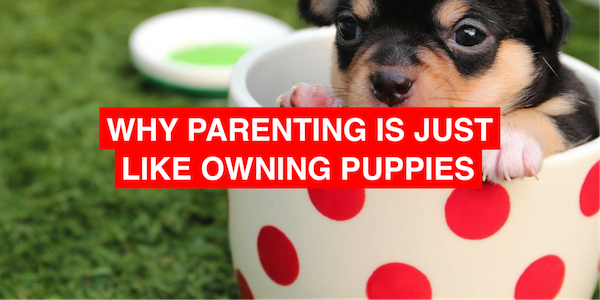 Why parenting is just like owning puppies (sort of)
